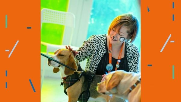 Story Time for Dogs - Seven Stories
